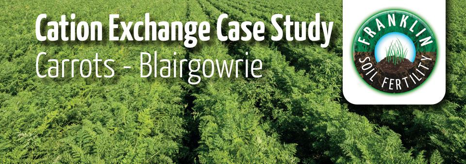 Carrots - Blairgowrie